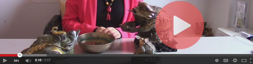 Feng Shui Money Frog Video